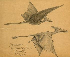 "Eskin C. Kuhn saw two ""pterodactyls"" in Cuba in 1971"